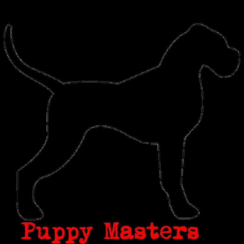 21758-sticker-silhouette-chien (1)