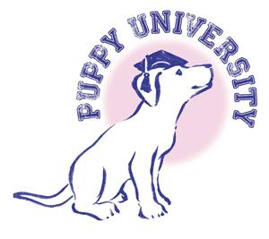 Puppy School University